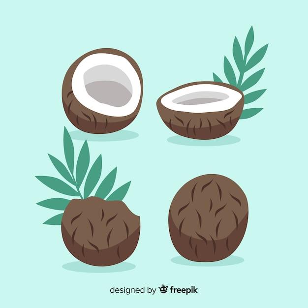 Collection de noix de coco dessinée à la main Vecteur gratuit