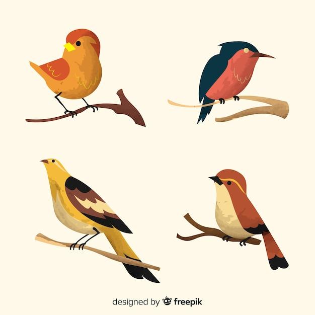 Collection d'oiseaux aquarelles sur des branches Vecteur gratuit