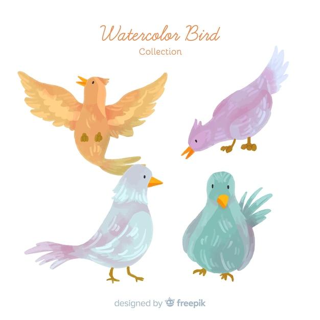 Collection d'oiseaux d'automne dessinés à la main Vecteur gratuit