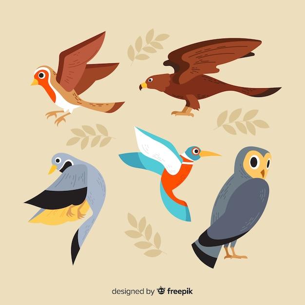 Collection d'oiseaux automne dessinés à la main Vecteur gratuit