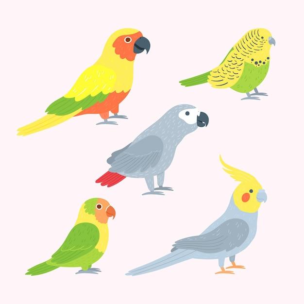 Collection D'oiseaux Dessinés à La Main Vecteur gratuit