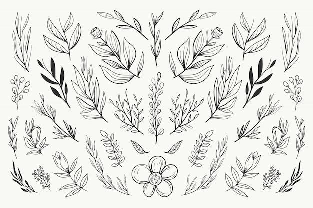 Collection d'ornement de mariage floral Vecteur Premium