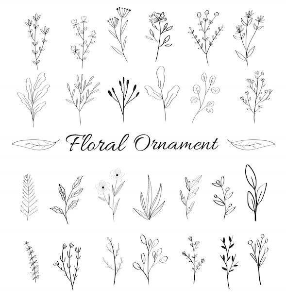 Collection d'ornements floraux féminins pour carte de mariage Vecteur Premium