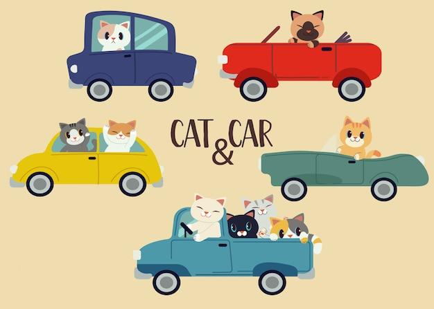 La collection de pack de chat et de voiture Vecteur Premium