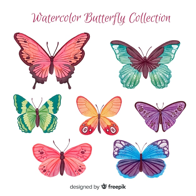 Collection de papillons aquarelle Vecteur gratuit