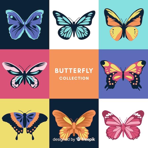 Collection de papillons Vecteur gratuit