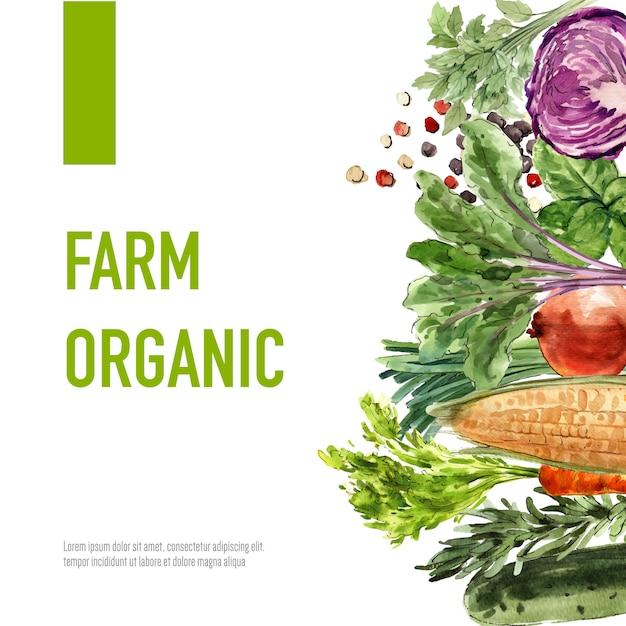 Collection de peinture végétale à l'aquarelle. illustration saine d'annonce saine de décor organique de nourriture fraîche Vecteur gratuit