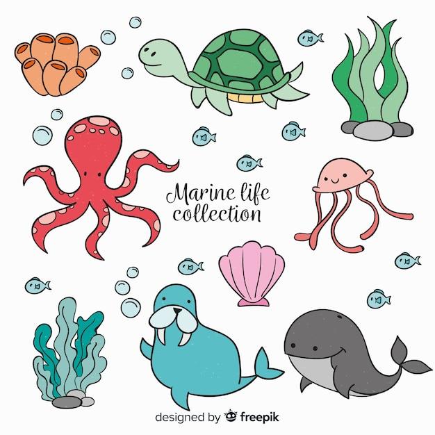 Collection de personnages de la vie marine Vecteur gratuit