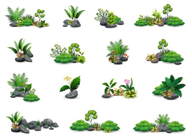 Collection de petites plantes botaniques Vecteur Premium