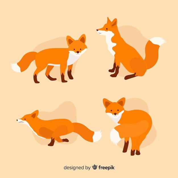 Collection de petits renards mignons Vecteur gratuit
