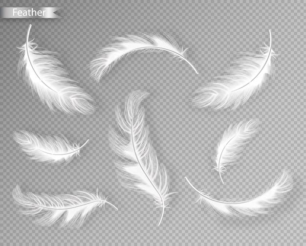 Collection de plumes blanches Vecteur Premium