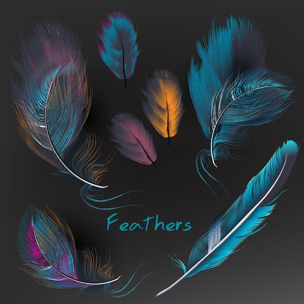 Collection de plumes multicolores Vecteur gratuit