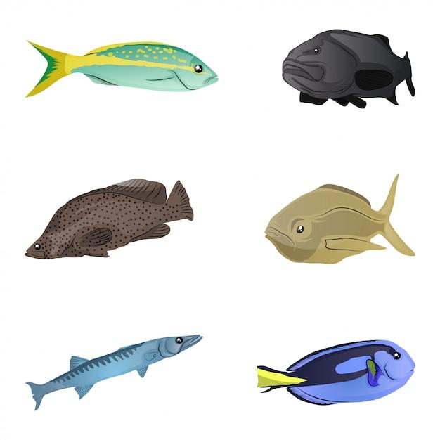Collection de poissons colorés Vecteur Premium