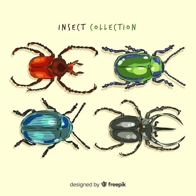 Collection réaliste de coléoptères dessinés à la main Vecteur gratuit