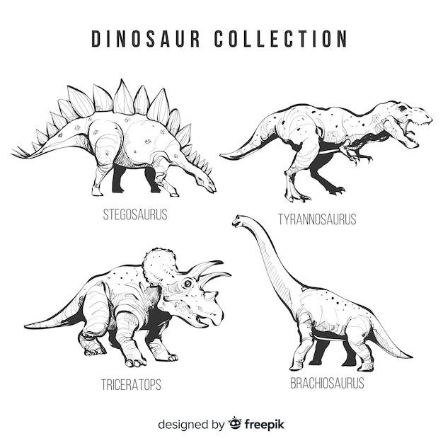 Collection Réaliste De Dinosaures Dessinés à La Main Vecteur gratuit