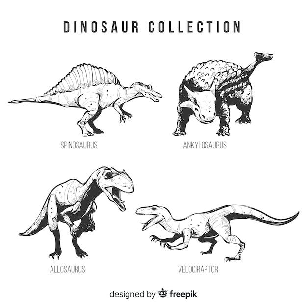 Collection réaliste de dinosaures dessinés à la main Vecteur gratuit