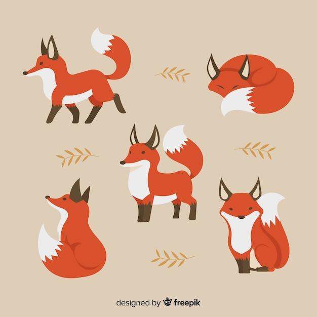 Collection de renard dessiné à la main Vecteur gratuit