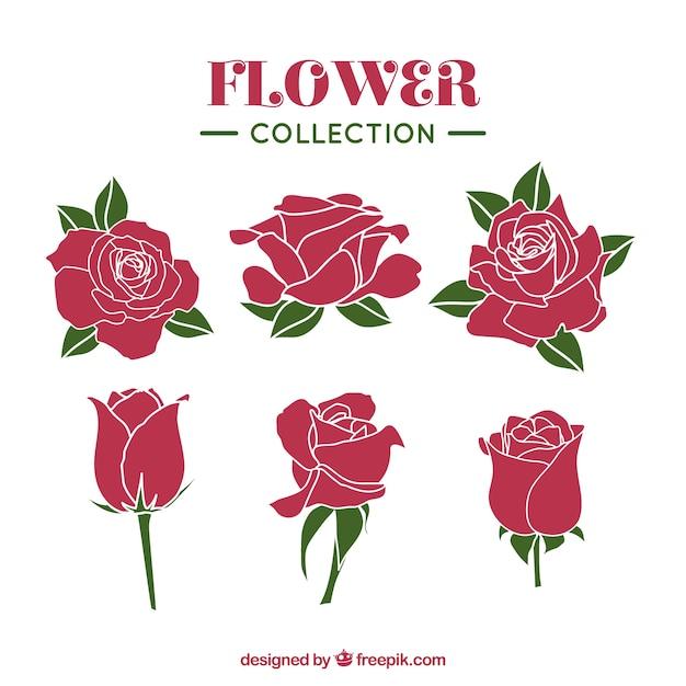 Collection De Roses Avec Des Styles Différents Vecteur gratuit