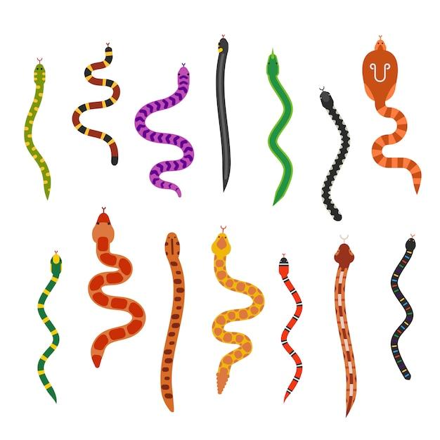 Collection de serpents plat de vecteur isolée sur fond blanc Vecteur Premium