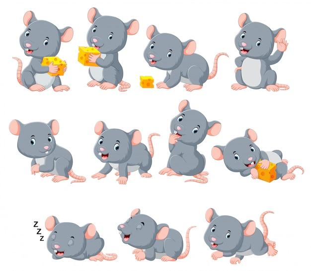 Collection de souris mignonne avec divers posant Vecteur Premium