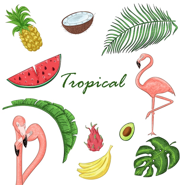 Collection tropicale pour la fête de l'été: feuilles exotiques, flamants roses et fruits. Vecteur Premium