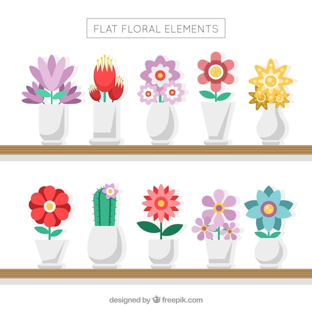 Collection de vases avec de belles fleurs Vecteur gratuit