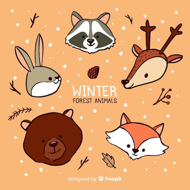 Collection de visages d'animaux de la forêt d'hiver Vecteur gratuit