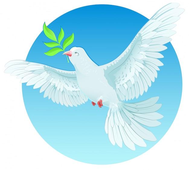 Colombe blanche tenant un rameau vert, concept de la journée internationale de la paix Vecteur Premium