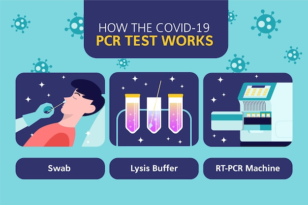 Comment Fonctionne Le Test Pcr Infographique Vecteur gratuit