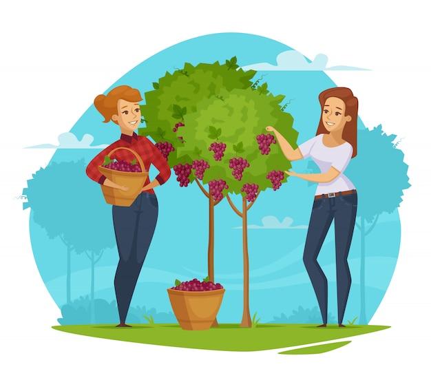 Composition de dessin animé winery grape harvesting Vecteur gratuit