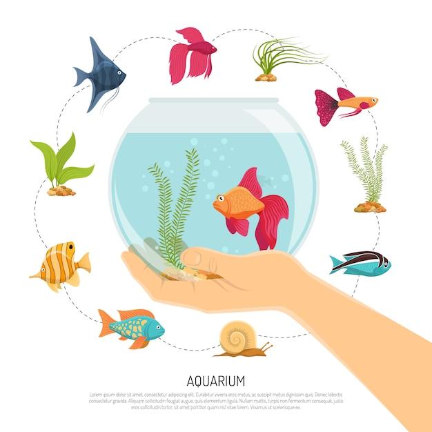 Composition de main bol de poisson Vecteur gratuit