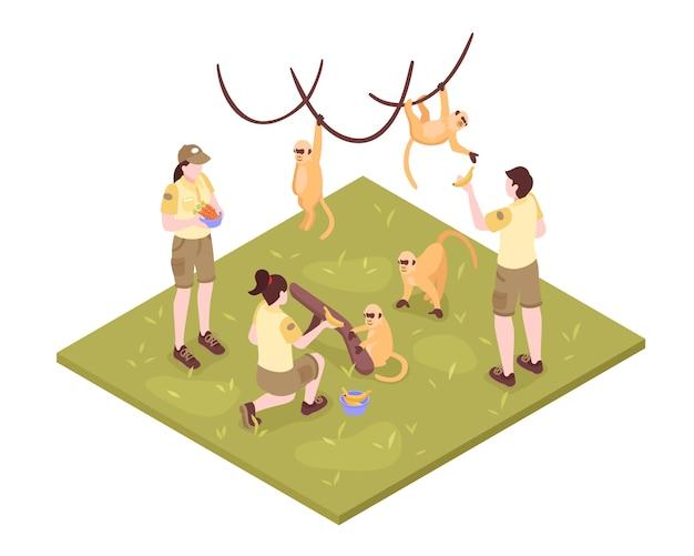 Composition Des Travailleurs De Zoo Isométrique Sur Fond Blanc Avec Des Singes Tropicaux Et Groupe De Personnages Gardien De Zoo Vecteur gratuit