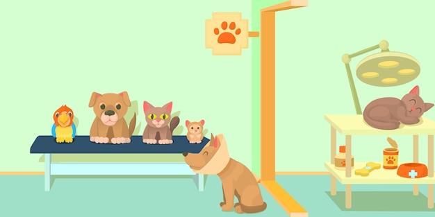 Concept De Bannière Horizontale De Clinique Vétérinaire Vecteur Premium