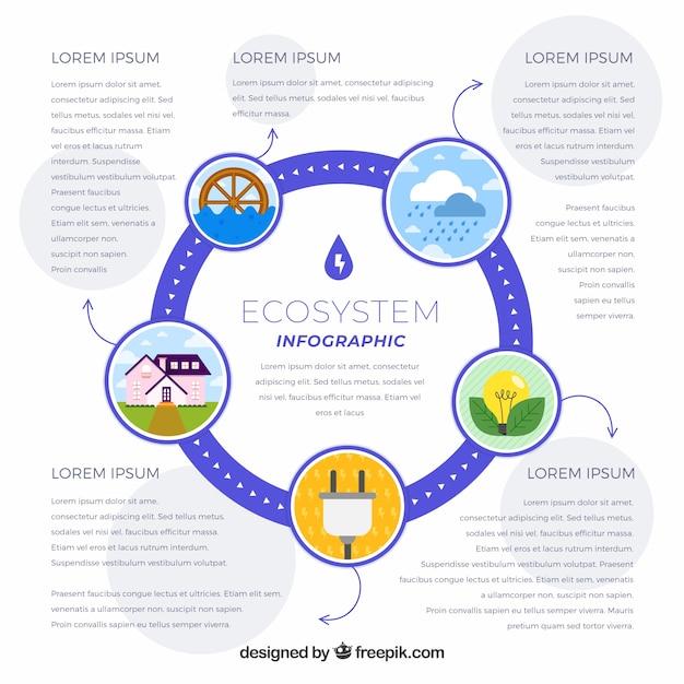 Concept d'infographie de l'écosystème Vecteur gratuit
