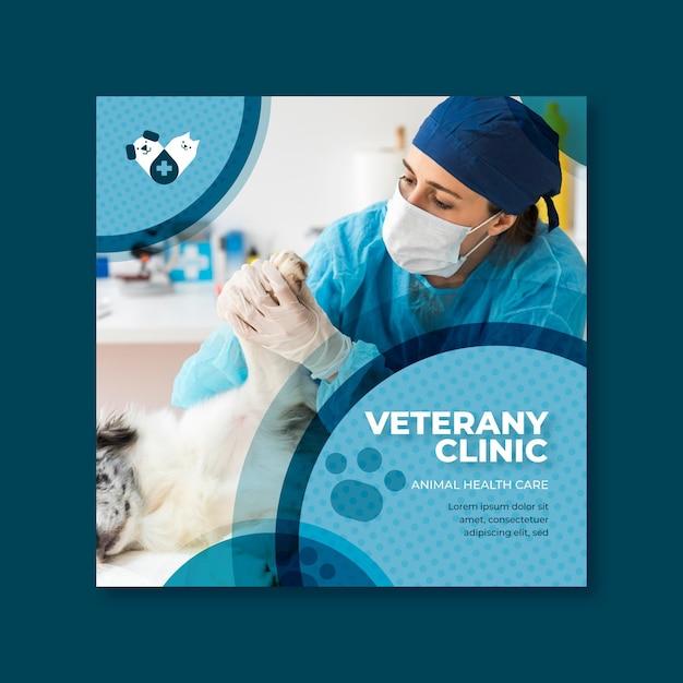 Concept De Modèle De Flyer Vétérinaire Vecteur gratuit