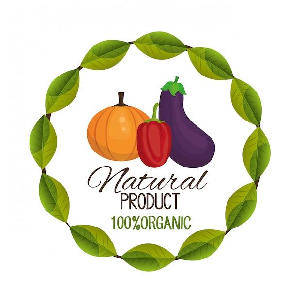 Conception d'aliments sains Vecteur gratuit