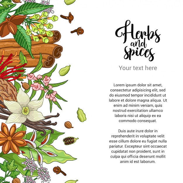 Conception de cartes de boulangerie avec des épices et des herbes Vecteur Premium