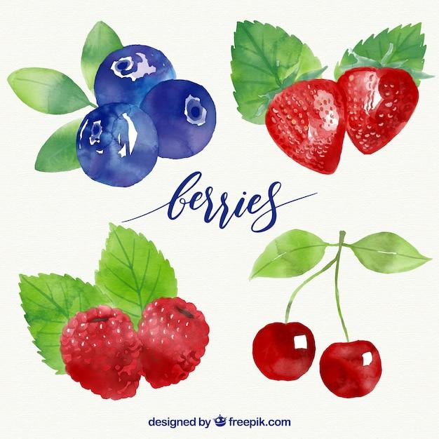 Conception de collection de fruits Vecteur gratuit