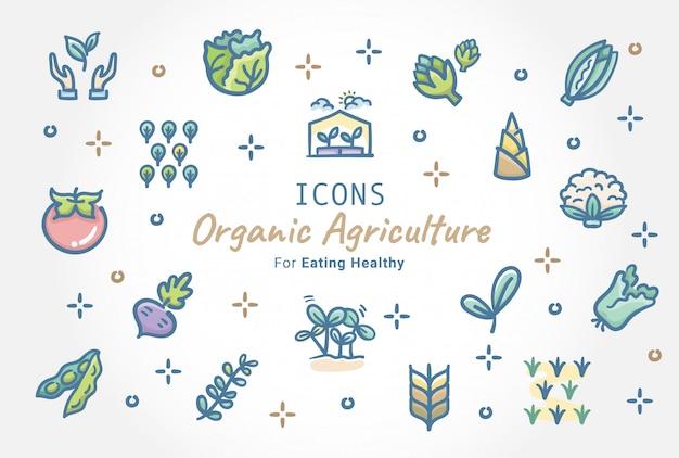 Conception De La Collection D'icônes Doodle Pour L'agriculture Biologique Vecteur Premium