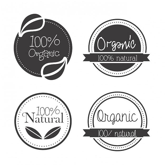 Conception écologique sur illustration vectorielle fond blanc Vecteur Premium