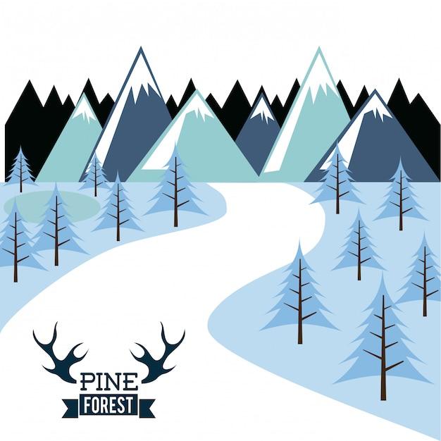 Conception De La Forêt Sur L'illustration Vectorielle Fond Blanc Vecteur Premium