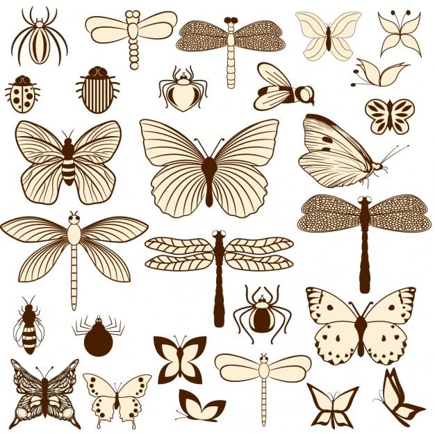 La conception des insectes Vecteur gratuit