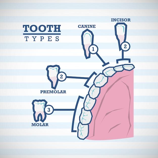 Conception des soins dentaires Vecteur Premium