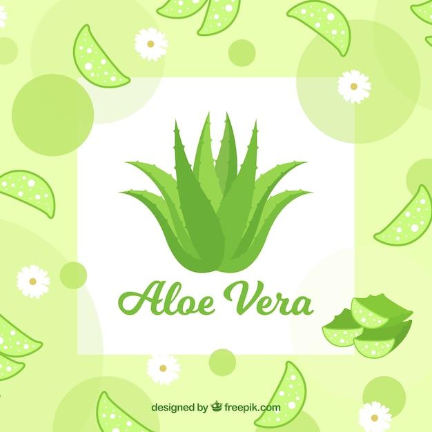 Contexte d'aloe vera avec des feuilles et des fleurs Vecteur gratuit