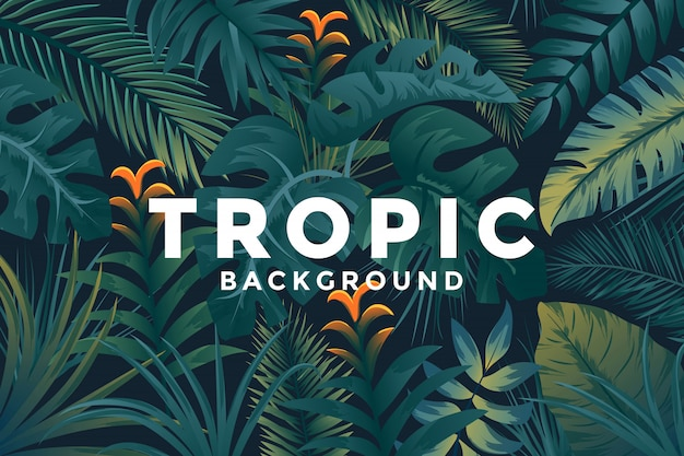 Contexte Tropical Vecteur Premium