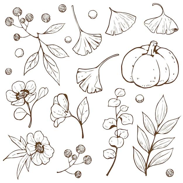 Contour de doodle automne accessoire Vecteur Premium