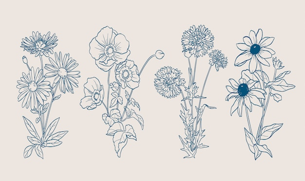 Contours De Fleurs D'automne Vecteur gratuit