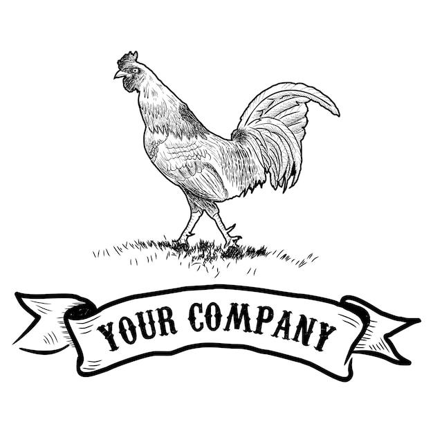 Coq en style graphique, illustration dessinée à la main Vecteur Premium