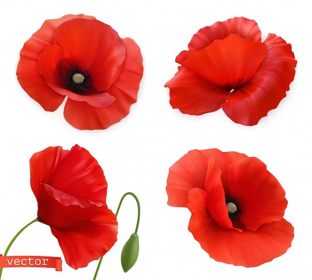 Coquelicots Rouges. Jeu D'icônes De Papaver Fleurs 3d Vecteur Réaliste Vecteur Premium