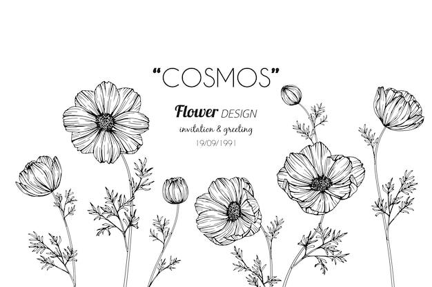 Cosmos fleur dessin illustration Vecteur Premium